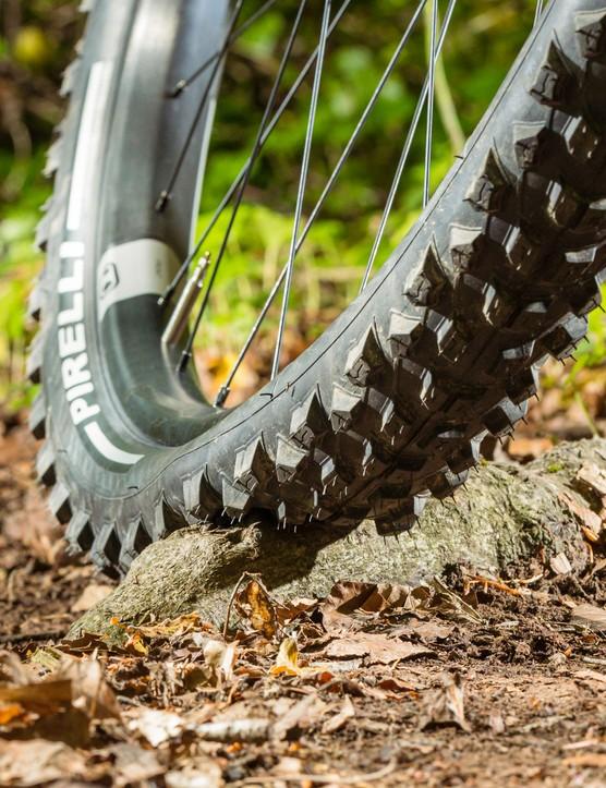 Mountain bike tyre pressure, proper tyre pressure on root