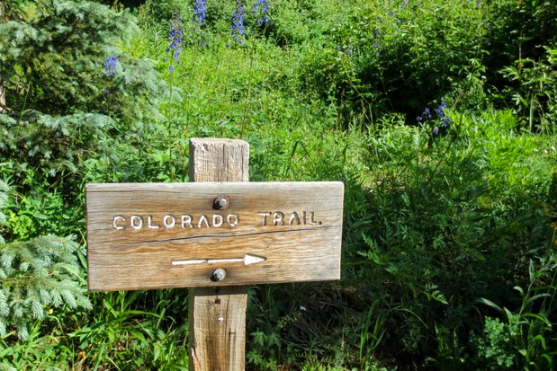 Image of a simple wooden sign for the Colorado trail with an arrow pointing to the right