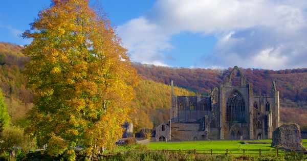 Visit Tintern, Monmouthshire: best walks, places to stay and things to do