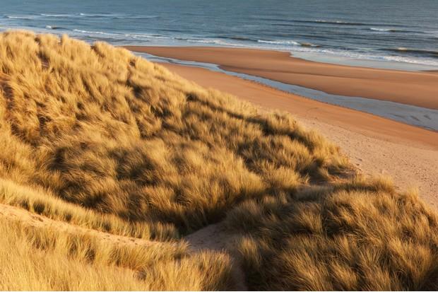 Sea and sand dunes