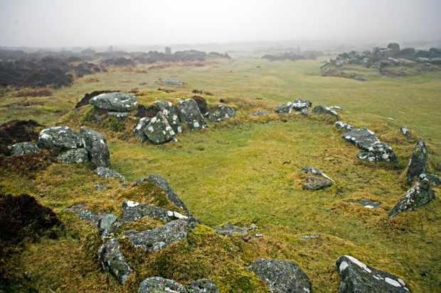 Fox Tor Mire, Dartmoor