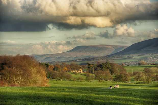View across farmland towards distant fells, looking towards Pendle Hill in the Forest of Bowland, Lancashire