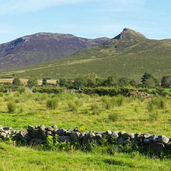 Rocky Mountain, Mourne Mountains, County Down, Northern Ireland