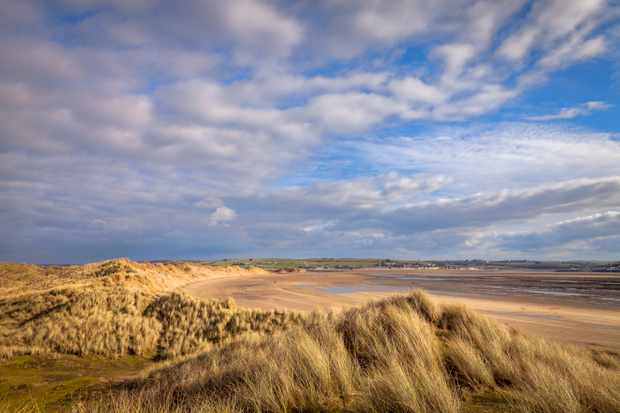 Braunton Burrows is a nature reserve in North Devon