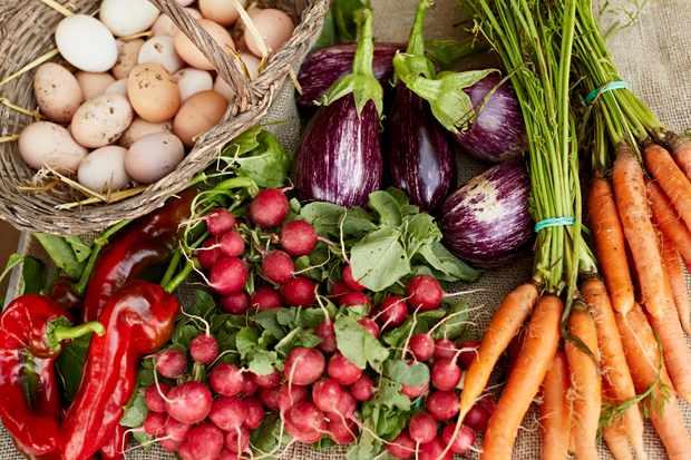 Seasonal recipes to celebrate National Vegetarian Week