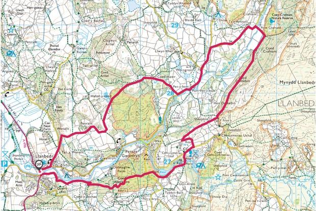 Llanbedr Woods map