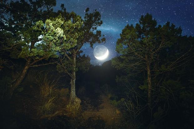 Family moon trail