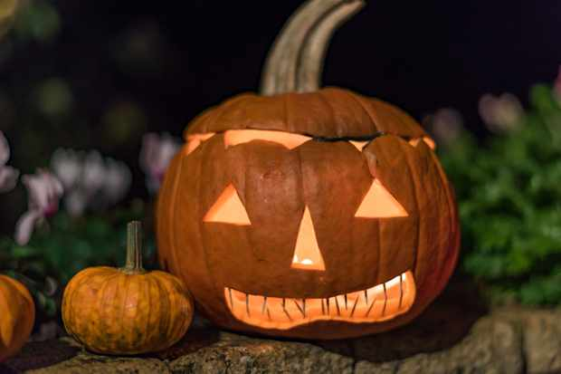 Pumpkin carving is a popular Halloween tradition in the UK today (Getty)