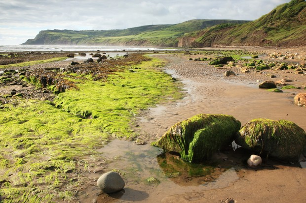 Beach at Robin Hoods Bay