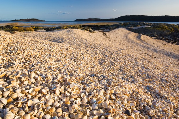 Cockle shell beach at Rockcliffe in Dumfries and Galloway caught at dusk.