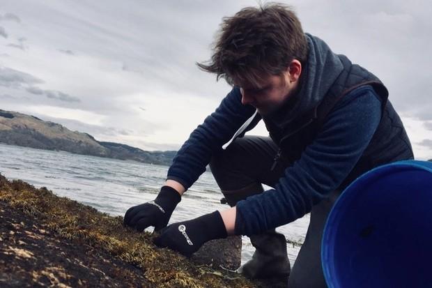 Arduaine Seaweed, Scotland