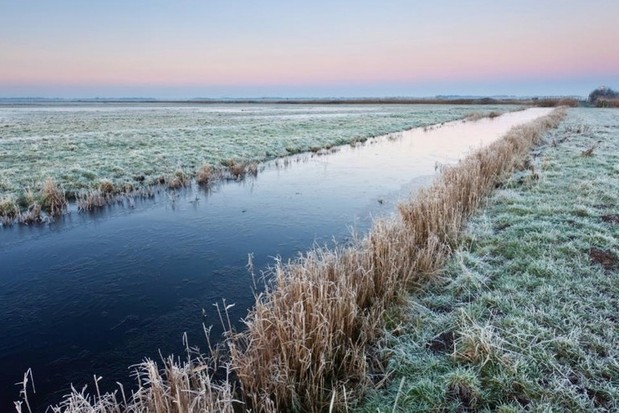 The marshes are home to wigeon, shelducks and Bewick's swans in winter