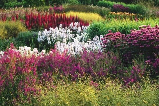 Pensthorpe Gardens