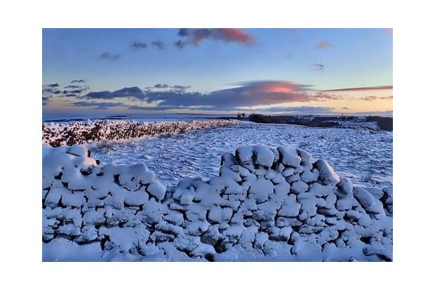 Great Ayton Moor in winter