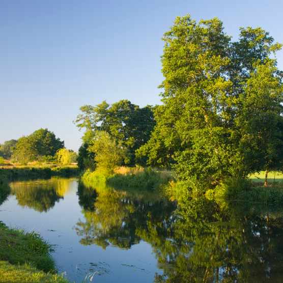 The River Wey Navigation, Send, Surrey, England