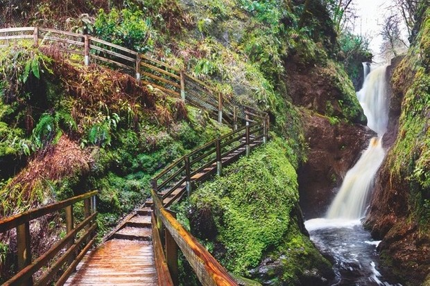 Boardwalks lead through the reserve from one waterfall to the next