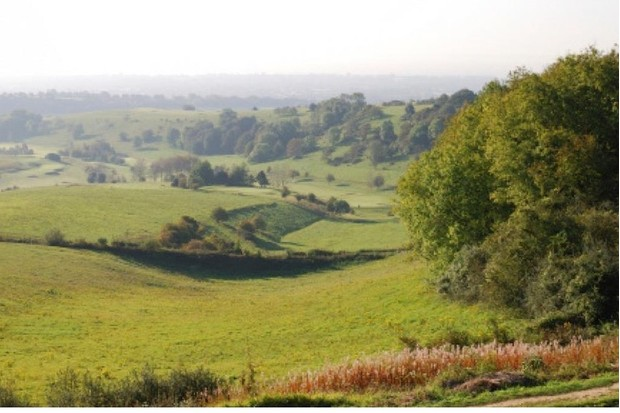 The Meon Valley