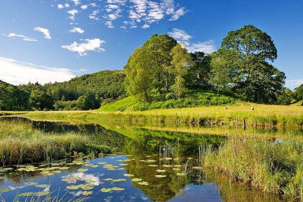 The River Brathay at Elterwater on a sunny day in Cumbia.