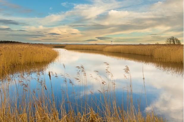 RSPB Reserve Newport Wetlands, near to Newport