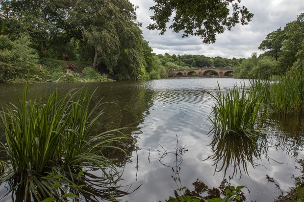View from riverbank at Nostell Priory, Wakefield