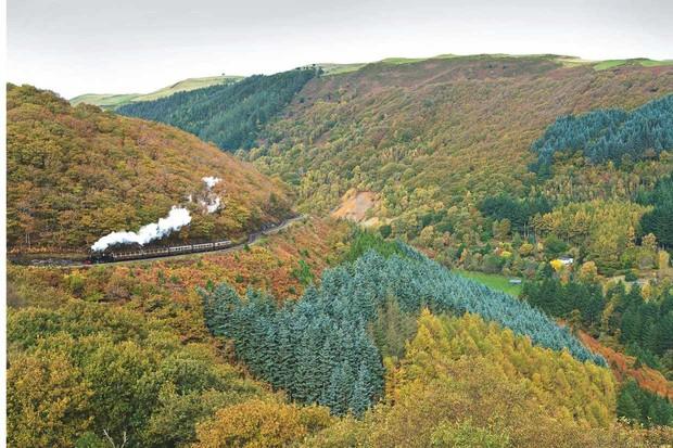 Vale of Rheidol