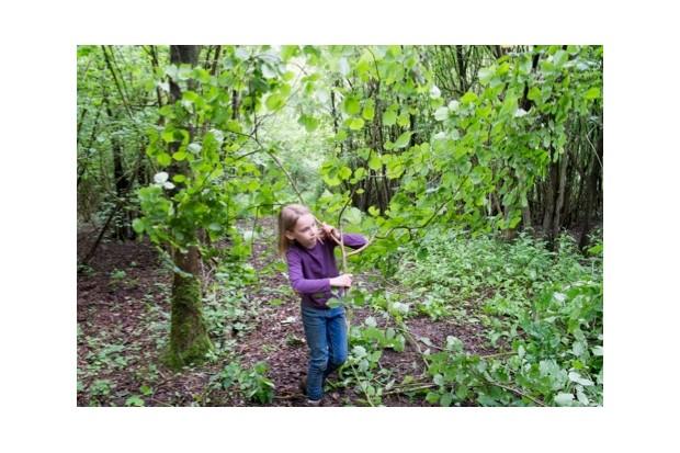 07_CF-woodland-survival-001-b56ea1e