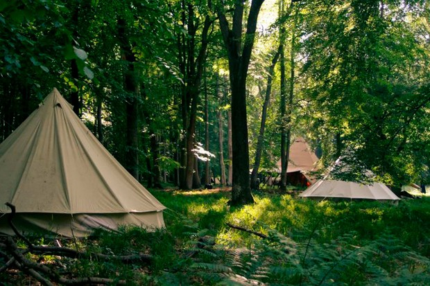 Britain's best forest and adventure camps for children ...