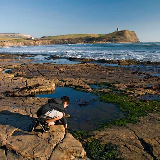 Boy looking into a rockpool