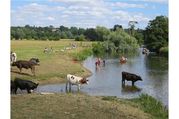 Manningtree Circular, Essex and Suffolk