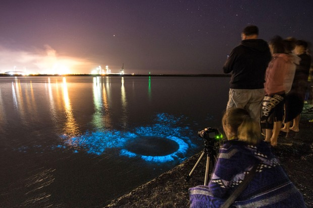 PIC: TIM BOW/APEX 23/07/2018