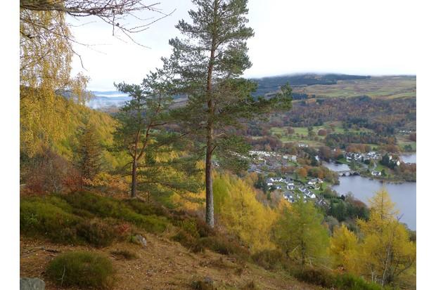 Aberfeldy and Loch Tay in autumn
