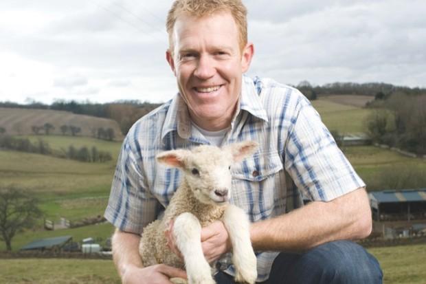 AdamHenson_lambs-11_1-ed8745f