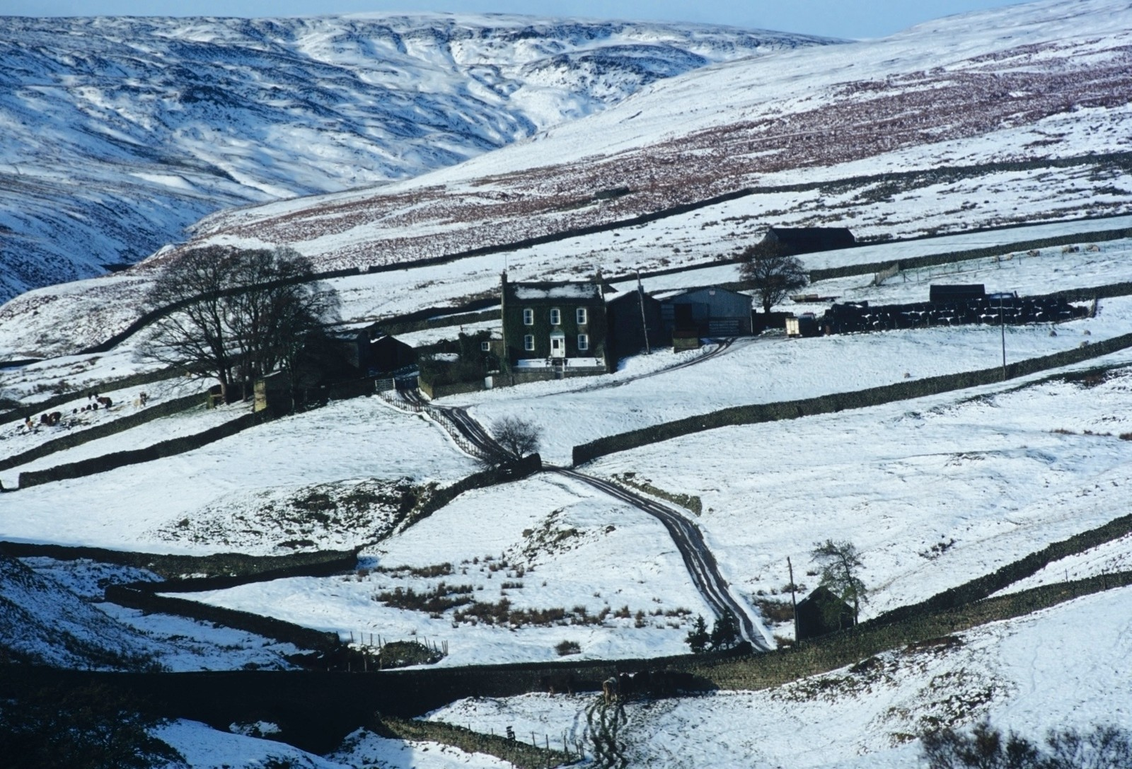 a remote farmhouse in the middle of snow covered fields in the winter - yorkshire dales national park, arkengarthdale, uk