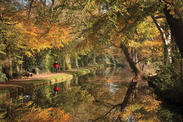 Autumn-leaves-Monmouthshire-Brecon-Canal-Copyright-Canal-River-Trust-041645b