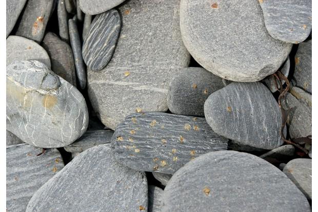 Beach-Surface-f8adbfe