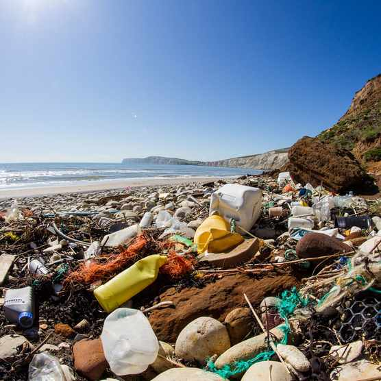 Beach-litter-f8b9775