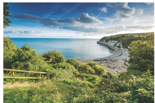 Panoramic view over Beer, Devon