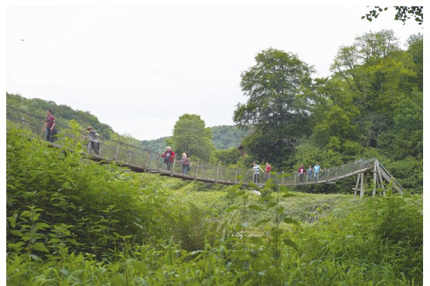 Biblins suspension bridge