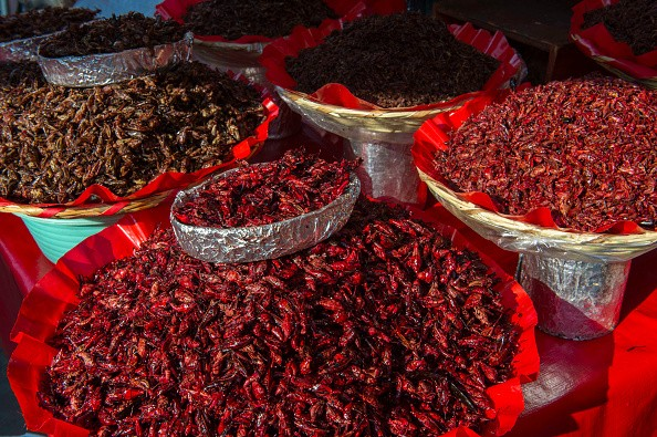 MEXICO - 2018/04/14: Close-up of fried grasshoppers for sale at the Benito Juarez Market in Oaxaca City, Mexico. (Photo by Wolfgang Kaehler/LightRocket via Getty Images)