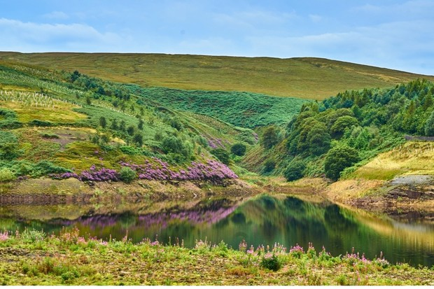 Butterly-Reservoir-Peak-District-2-8ec3d5f