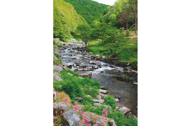 "And here, upon that stone, we rest awhile, For we can see the lovely river's fall,"" wrote British poet Arthur Shaughnessy in his poem Lynmouth"