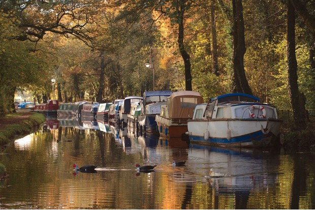 Canal with boats and trees
