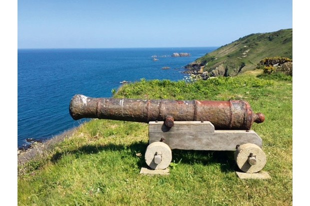 Cannon--9c700a2