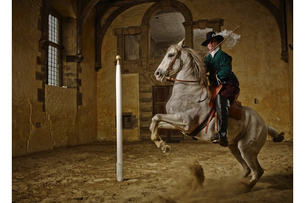 Bolsover horse photo shoot