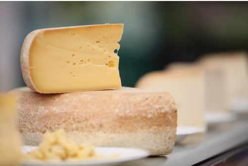 CheeseFestival1main-1e13bcd