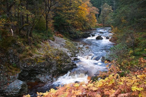 Coed y Brenin waterfalls