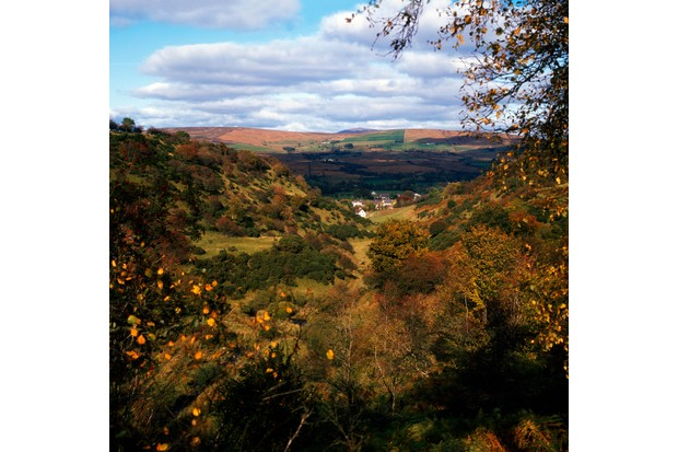 Autumn countryside views