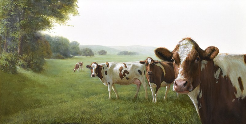 Cows20in20landscape-54b6a0c