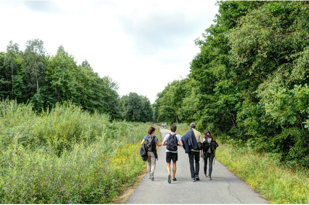 Summer walk through the woodland of the Crab and Winkle Way