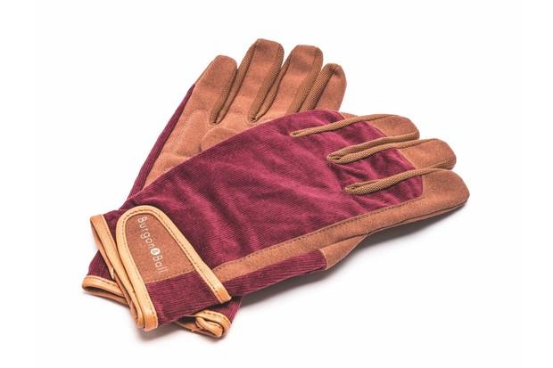 Dig_the_Glove_Burgon_and_Ball-1050bee